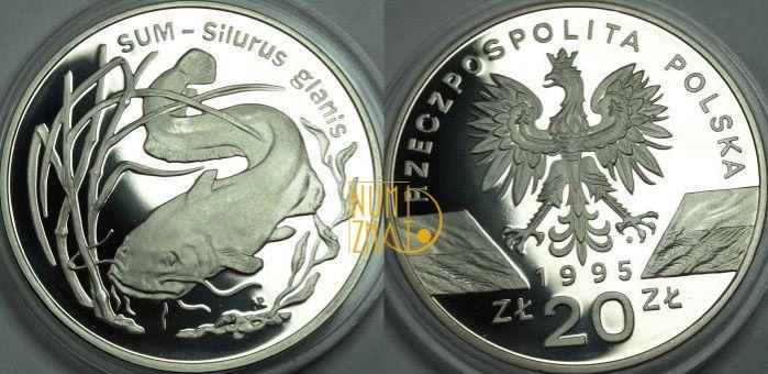 20 zł 1995 r. – Sum (Silurus galanis), Zwierzęta Świata